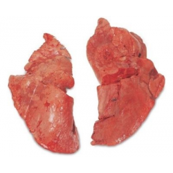New Zealand Beef Lungs