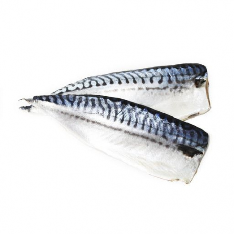 Saba Mackerel Fillet